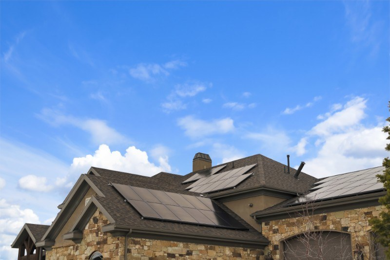 Critter Guards and Bird Netting: Protecting Your Solar Panels from Wildlife