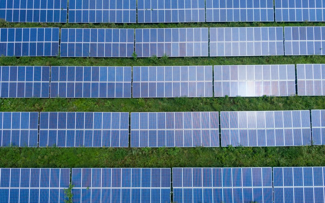 Going Solar 4 Steps to Make This Year the Best One Yet!